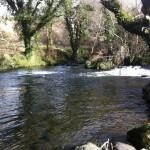 Llyn Meirch, Afon Dwyfor