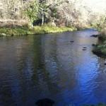 Noflyn, Afon Dwyfor